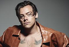 Harry Styles nude video