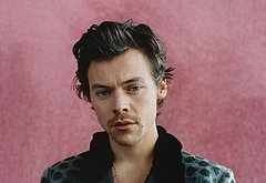 Harry Styles sexy