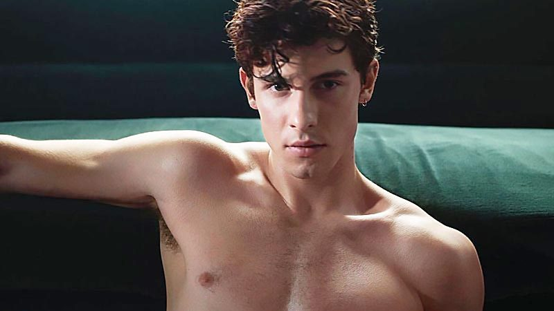 Shawn Mendes Leaked Nude Scandal & Underwear Bulge Photos