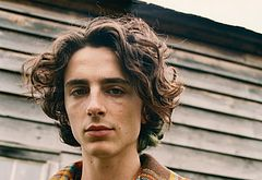 Timothee Chalamet sexy
